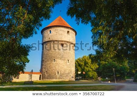 Tallinn Estland toren gebouw Blauw steen Stockfoto © borisb17