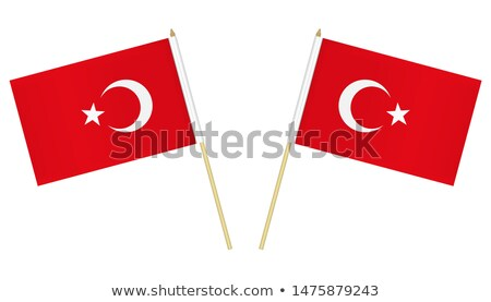 Turkey flag and hand on white background. Vector illustration Stock photo © butenkow
