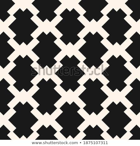 Linee etnica in bianco e nero texture abstract Foto d'archivio © samolevsky