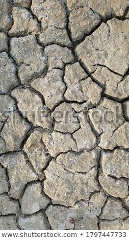 Tuzlu zemin doku doğa ışık arka plan Stok fotoğraf © pancaketom