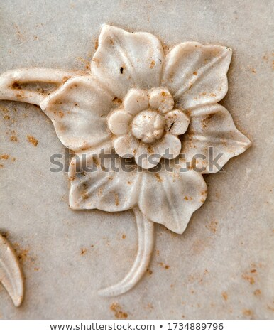 Floral bas-relief Stock photo © aladin66