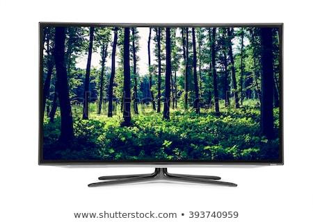 Nagyfelbontású televízió terv képernyő mozi színház Stock fotó © ozaiachin
