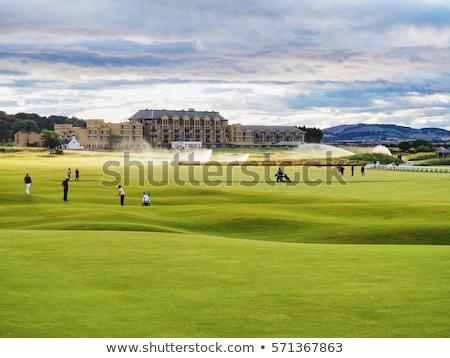 гольф Шотландии трава солнце лет зеленый Сток-фото © Julietphotography
