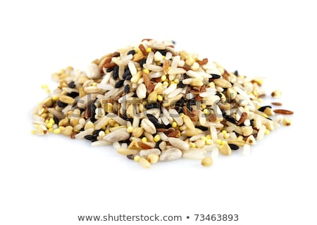 raw grains background mixed with 12 different grains stock photo © yuliang11
