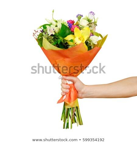 Stock fotó: Férfi · virágok · kéz · szemüveg · munkás · élet