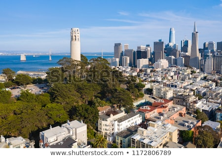 san francisco coit tower stock photo © hlehnerer