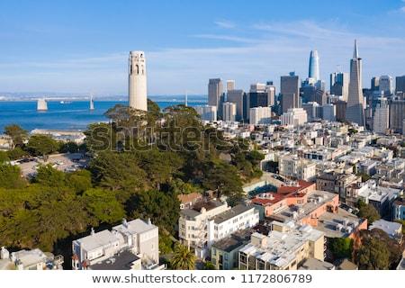 san francisco coit tower stock photo © hlehnerer