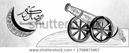 Cannons in the Moonlight Stock photo © billperry