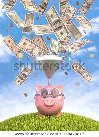 Piggy Bank воронка монетами улыбка Сток-фото © idesign