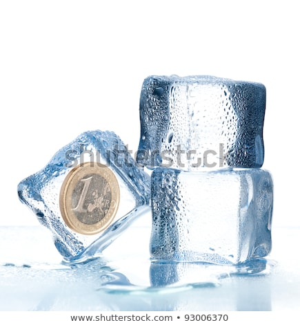 Ice Cube with Euro Coin Stock photo © Tomjac1980