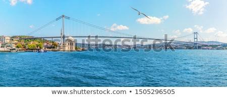 Isztambul · sziluett · Törökország · tenger · világ · óceán - stock fotó © sailorr