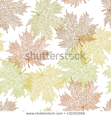 outono · ouro · folhas · cópia · espaço · texto · árvore - foto stock © wenani