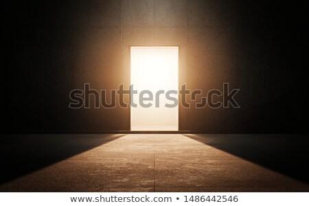 idea door stock photo © lightsource