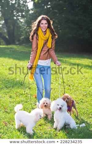Moda kız köpek orman genç genç kız Stok fotoğraf © DNF-Style