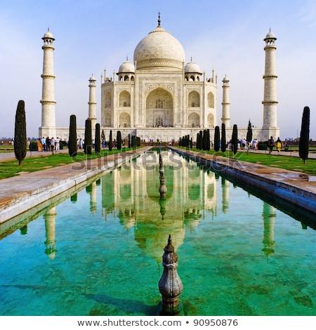 Taj · Mahal · mausoleum · boog · boom · reizen - stockfoto © meinzahn