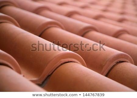 neve · telhado · azulejos · edifício · construção · casa - foto stock © bubutu