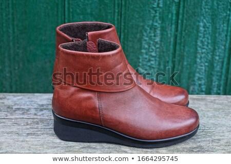 feminino · pernas · alto · marrom · couro · botas - foto stock © dashapetrenko