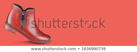 Brown Leather Shoes Stock photo © dezign56