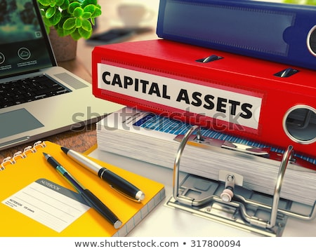 red office folder with inscription capital assets stock photo © tashatuvango