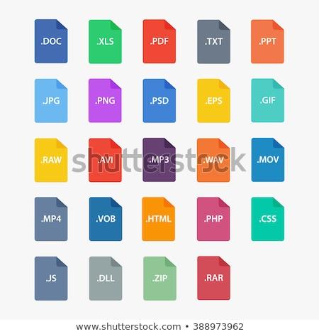 Akta ikon internet háló bemutató Stock fotó © kiddaikiddee