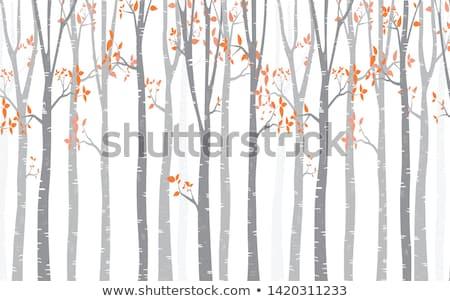 Huş ağacı ağaç orman vektör geyik kuşlar Stok fotoğraf © beaubelle