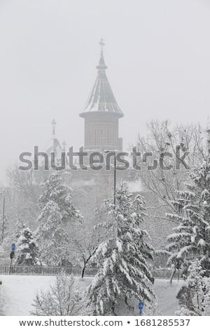 собора · город · Румыния · ориентир · архитектура - Сток-фото © tony4urban