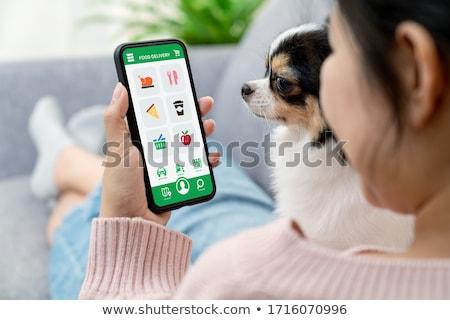 árengedmény online bolt okostelefon app nő pop art Stock fotó © studiostoks