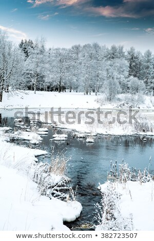 the river running through countryside stock photo © ondrej83