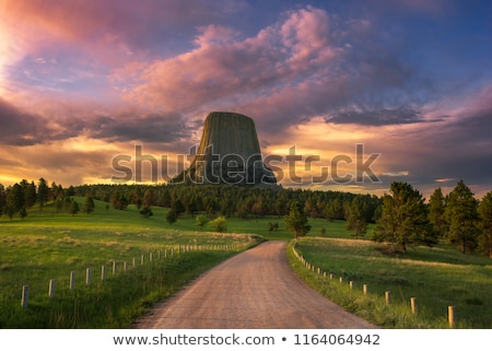 Devils Tower Wyoming Stock photo © pictureguy