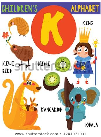Alfabet kangoeroe illustratie kinderen kind achtergrond Stockfoto © bluering