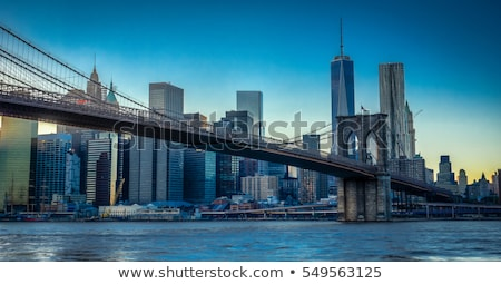 manhattan skyline seen from brooklyn side stock photo © meinzahn