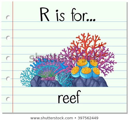 flashcard letter r is for reef stock photo © bluering