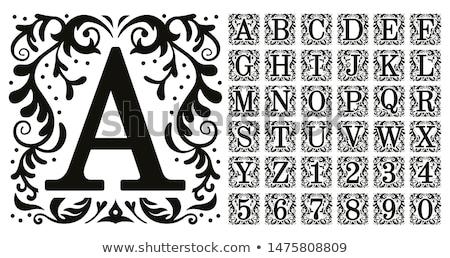 Szett nagybetű ábécé absztrakt firka papír Stock fotó © frescomovie