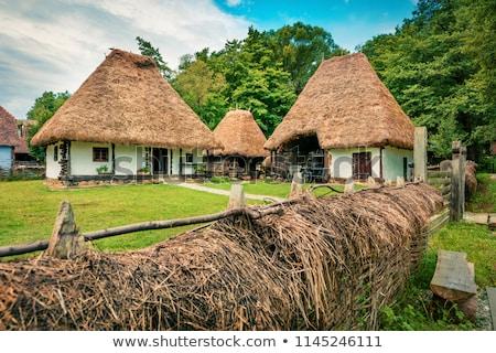 Transylvania traditional houses Stock photo © joyr