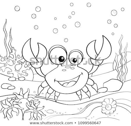 Océan page adulte livre de coloriage Photo stock © imagepluss