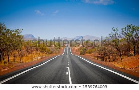 дороги поездку западной землю иллюстрация дерево Сток-фото © bluering