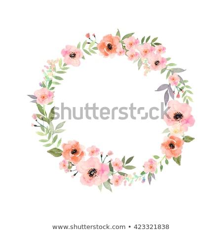Stockfoto: Krans · mooie · bloemen · geïsoleerd · vector
