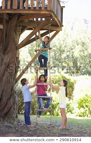 Boy helping friend to treehouse Stock photo © IS2