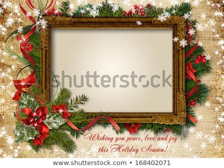 Fényképkeret karácsony bogyó gradiens háló hó Stock fotó © cammep