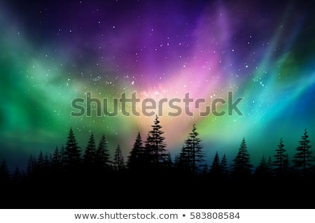 Winter landscape background with northern lights Stock photo © Sonya_illustrations