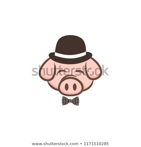 úr disznó disznóhús szalonna rajz felirat Stock fotó © vector1st