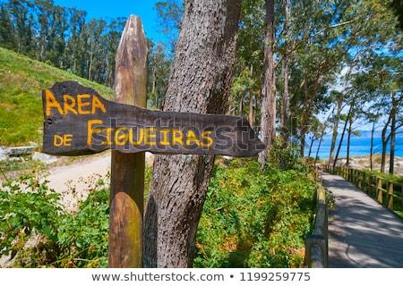 Figueiras nudist beach road sign in Islas Cies island Stock photo © lunamarina