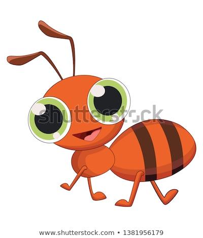 Sorridere piccolo ant cartoon illustrazione animale Foto d'archivio © cthoman