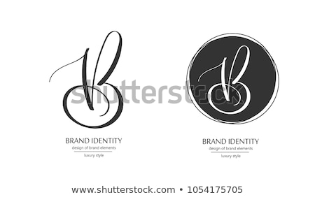 letter b black vector icons set elements Stock photo © blaskorizov