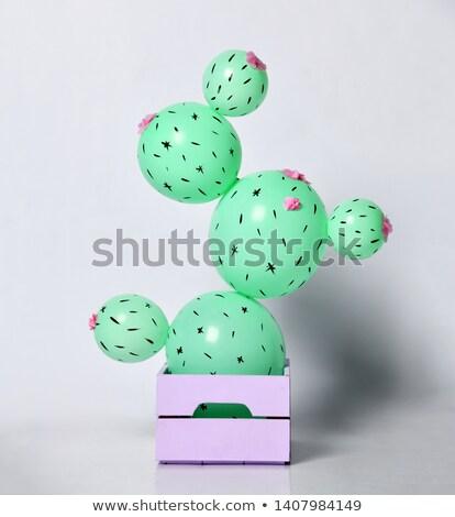 Detail ballon cactus tuin groene groep Stockfoto © boggy