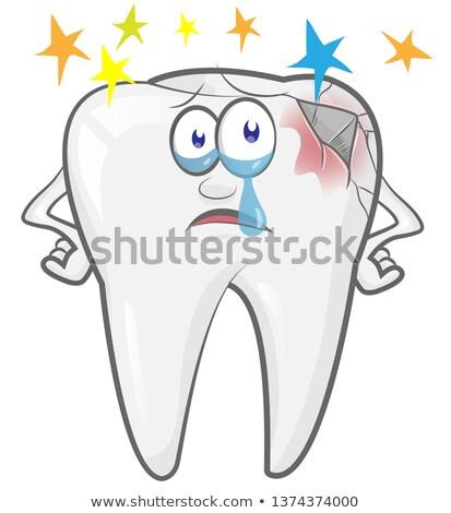 Desenho animado dente mascote vetor feliz saúde Foto stock © doomko