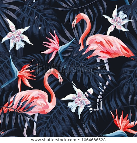 Tropical pattern with pink flamingo.  Stock photo © Artspace