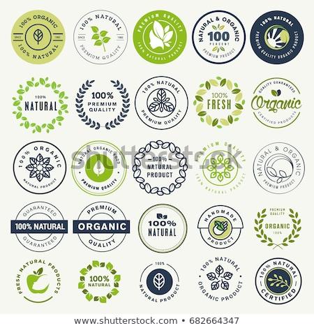 100 gecertificeerd label ontwerp teken Stockfoto © SArts