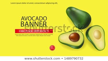 Avocado banner vettore realistico menu pagina Foto d'archivio © frimufilms