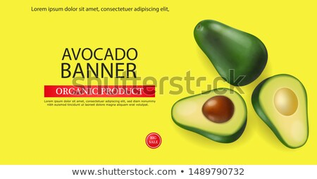 Abacate bandeira vetor realista menu página Foto stock © frimufilms
